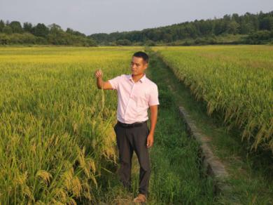 根植希望田野  走出金光大道――记湖南根智农业综合开发有限公司
